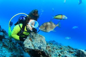 Rubicon Diving Lanzarote | What to see