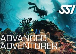 Rubicon Diving | SSI Advanced Adventurer