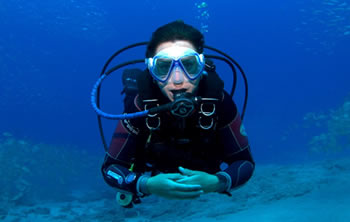 Dive Courses | Become a certified diver