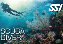 Rubicon Diving | SSI Scuba Diver