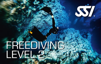 Try Diving | Dive Centre Rubicon Diving Lanzarote